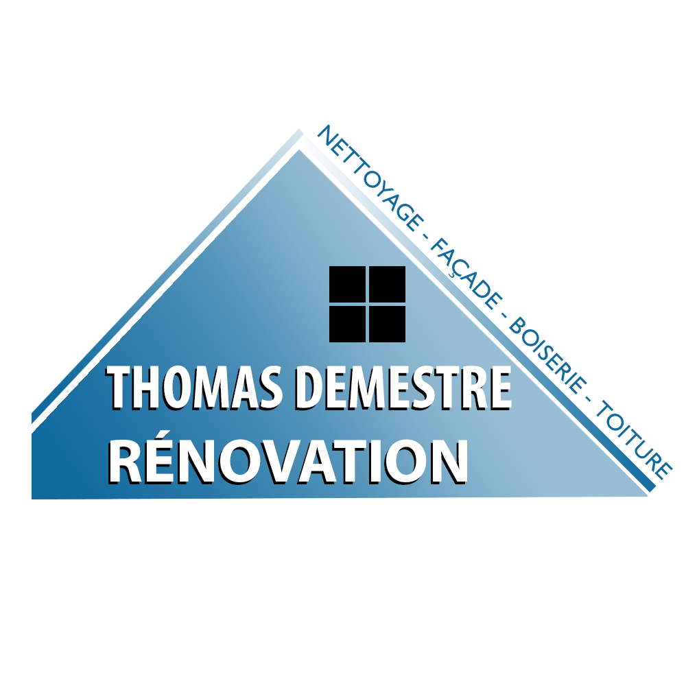 Logo THOMAS DEMESTRE RENOVATION